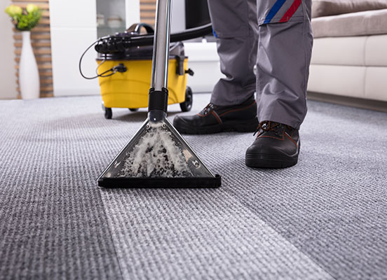 Carpet Cleaning & Pest Control Services