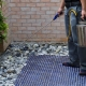 Common Questions About Pest Control Brisbane Residents Ask
