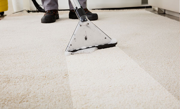 Why Hire Us for Carpet Cleaning