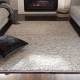 Professional Rug Cleaning 101